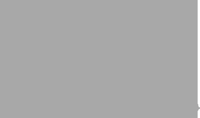 Carose International stores